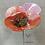 Thumbnail: Grande fleur décorative.