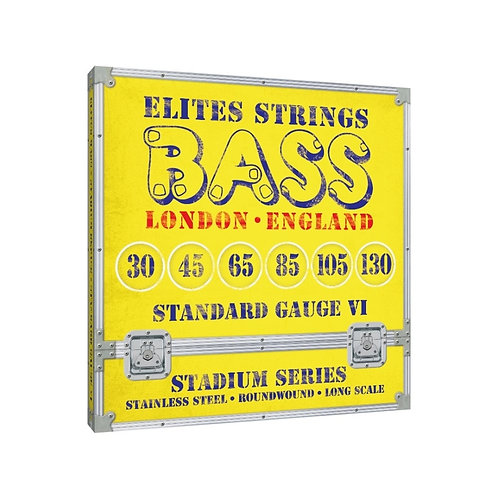 Stadium Series: Standard Gauge 6 String Set (30-130)