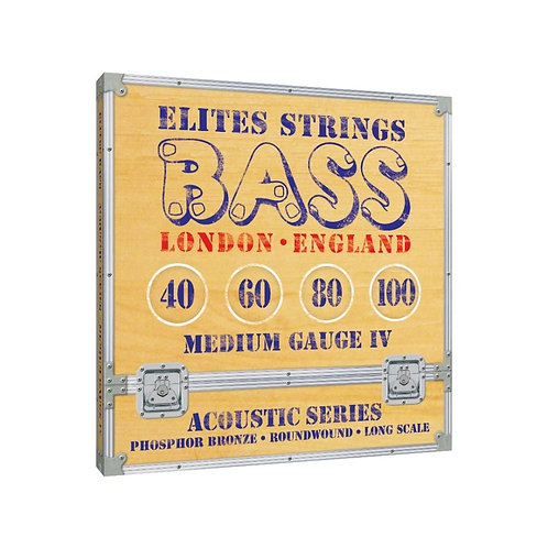 Elites Acoustic Series: Medium Gauge 4 String Set (40-100)