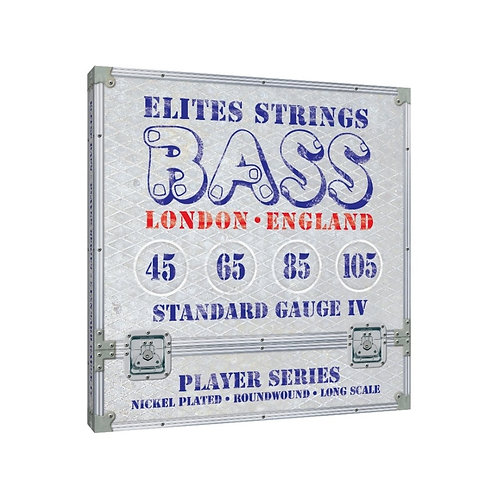 Elites Player Series: Standard Gauge 6 String Set (45-105)
