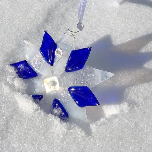 Snowflake, Snow Wonder