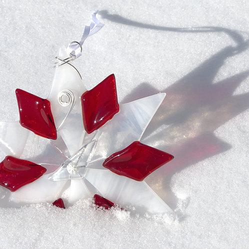Snowflake, Festive Fun