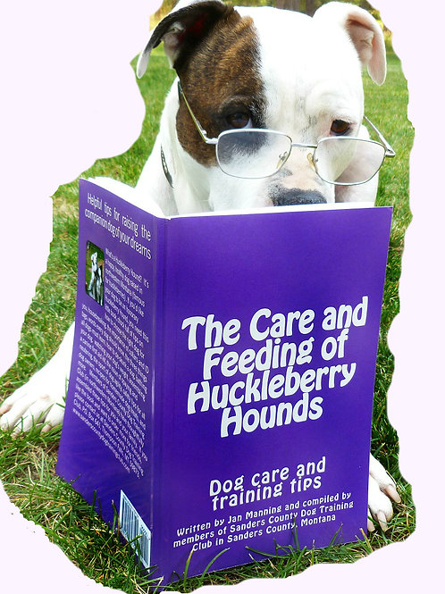 The Care and Feeding of Huckleberry Hounds