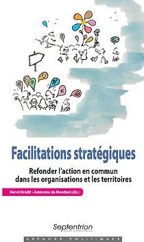 Couverture livre facilitations strategiq