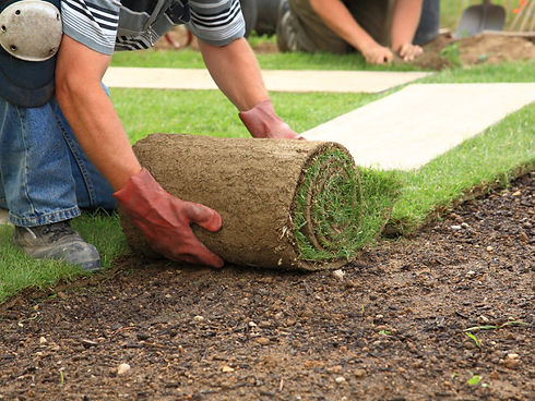 Farm Fresh St. Augustine Sod installation in Hurst, TX by Brothers Landscape Services in Euless, TX.