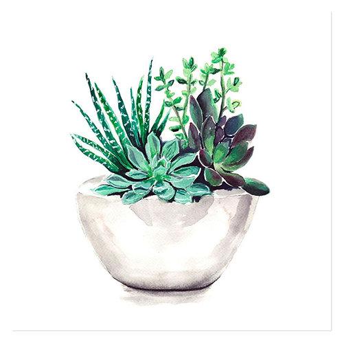 "Design servietter 3-Lag ""Exotic Plants"" 33 x 33 cm 20 stk."