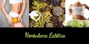 herbolaria estetica.png