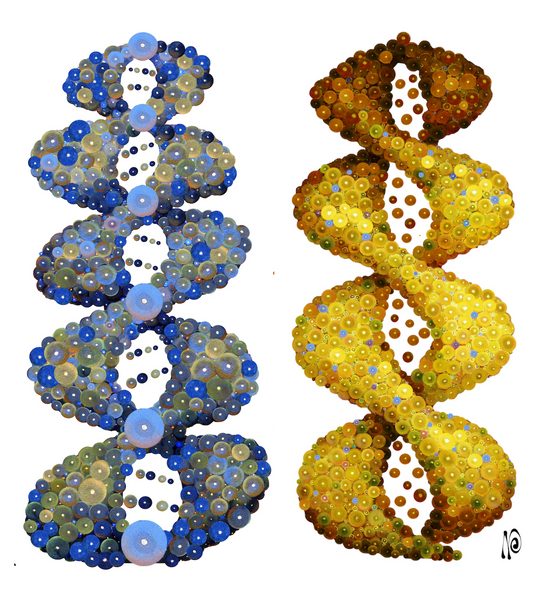 DNA Flowers of Life, Blue/Yellow