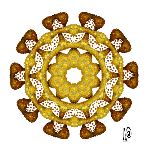 DNA Flower 3