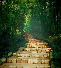 33) Steps