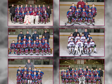 Ice Hawks 2018 Photo Display