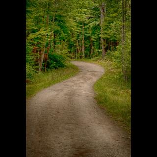 9) Hiking Path