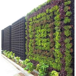 vertical-garden-500x500.jpg