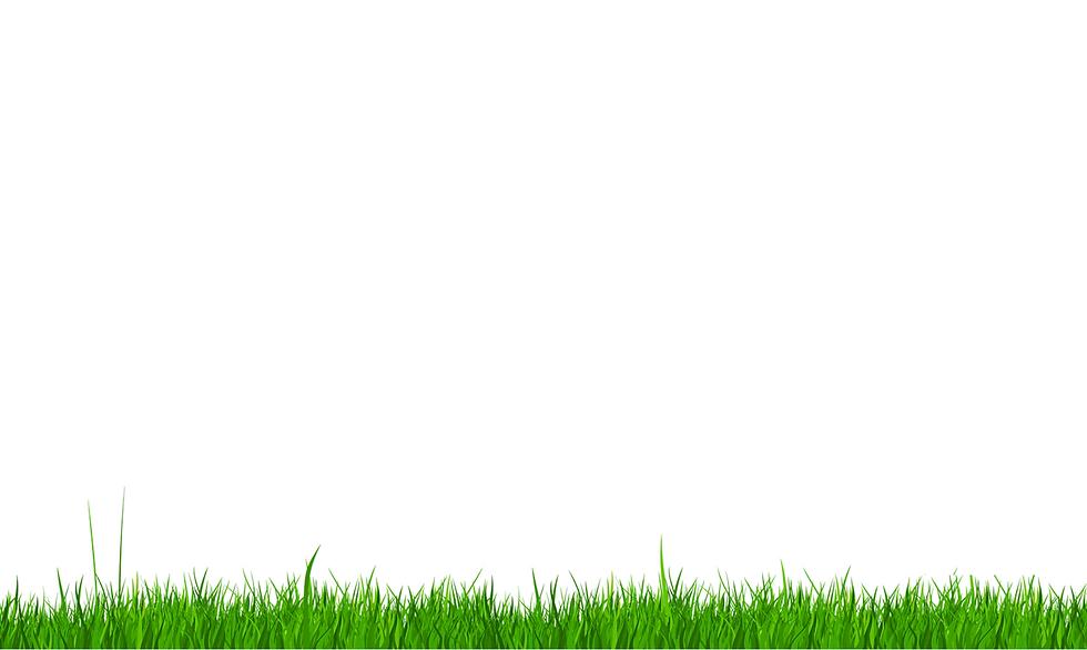 arkaplan çim.