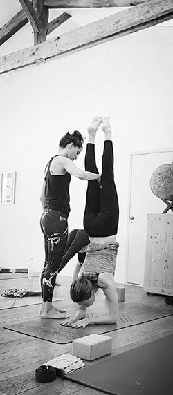 Formation Yoga - Pincha