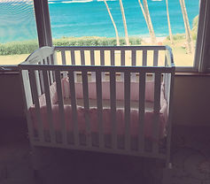 hawaii baby rentals