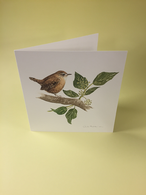 Little Bird Art Studio - Wren