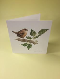 Little Bird Art Studio - Wren