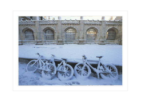 Bicycles at King's College