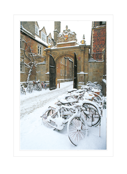 College Bicycles (Trinity College)