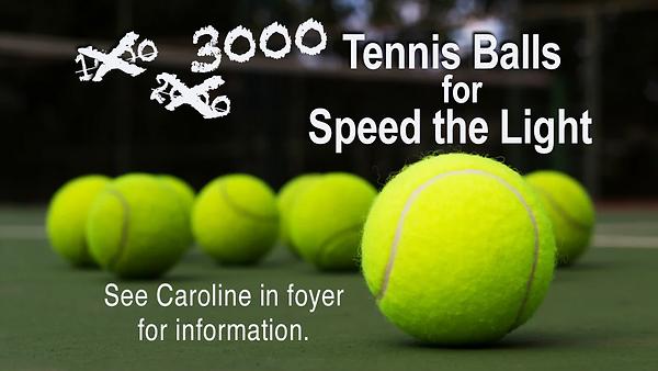 3000 Tennis Balls.png