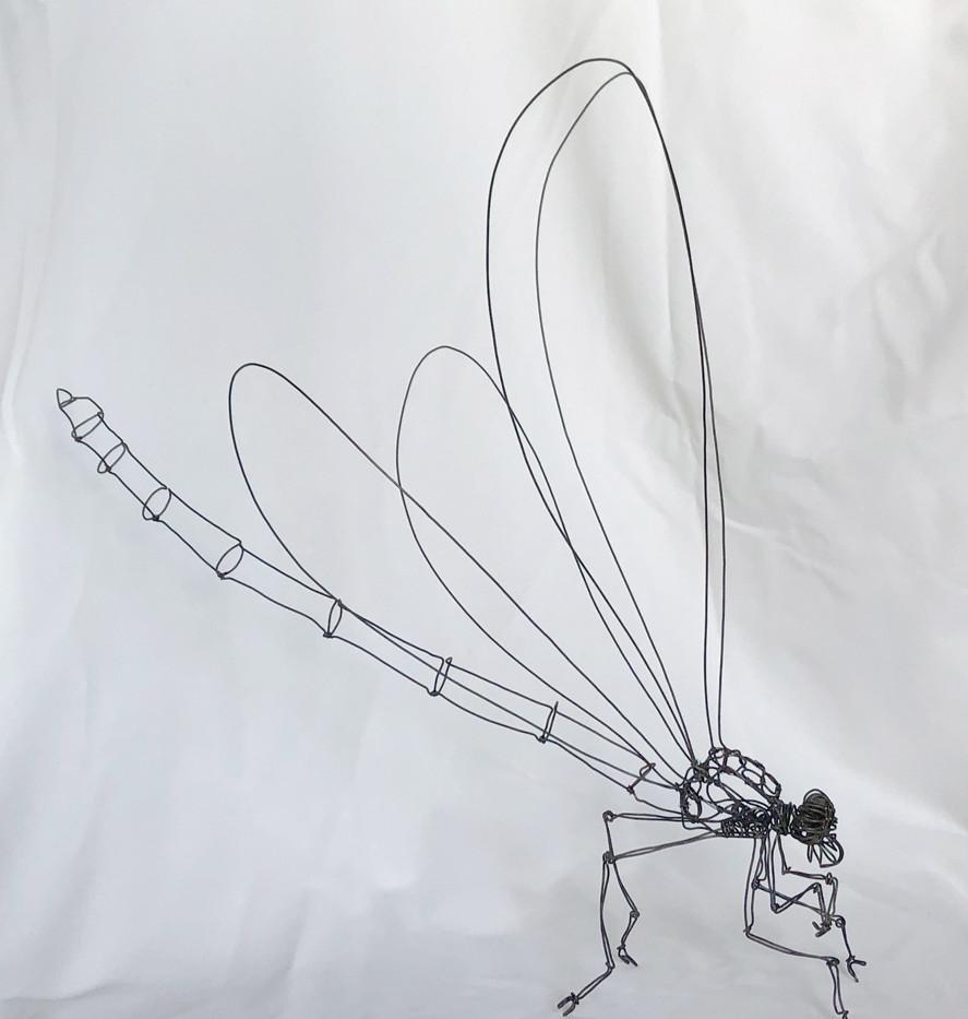 Libellule  Fil de fer recuit 1,2 mm L 48 H 48 cm  180 euros