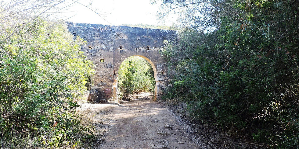 Percurso Boliqueime - Paderne