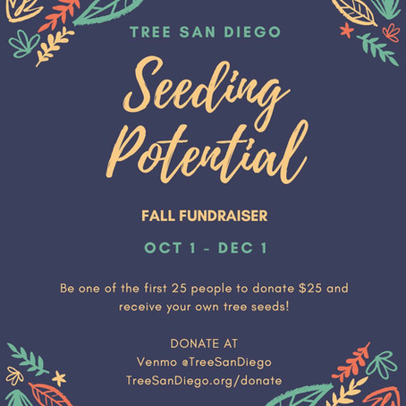 Oct 2020: TSD Launches Fall Seeding Potential Campaign
