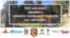 TreeSD CalFire Grant Announcement Flyer.