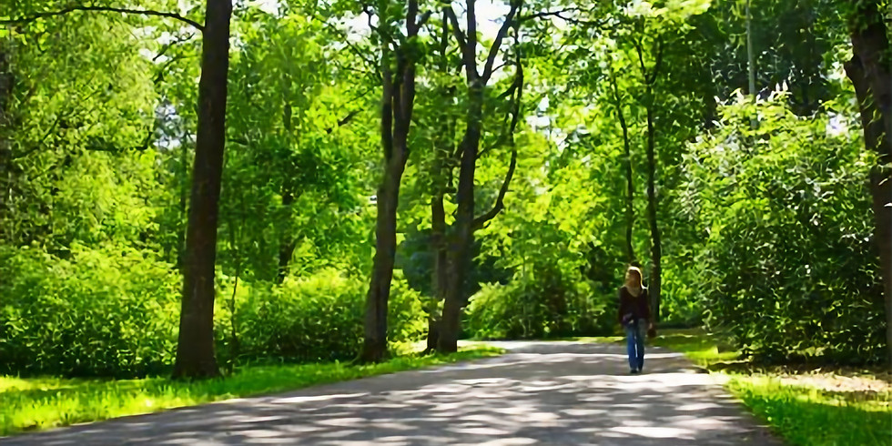 Urban Forestry Today: Energy Benefits of Trees