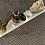 Thumbnail: Selenite Crystal Charging Plate