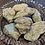 Thumbnail: Raw Fuchsite