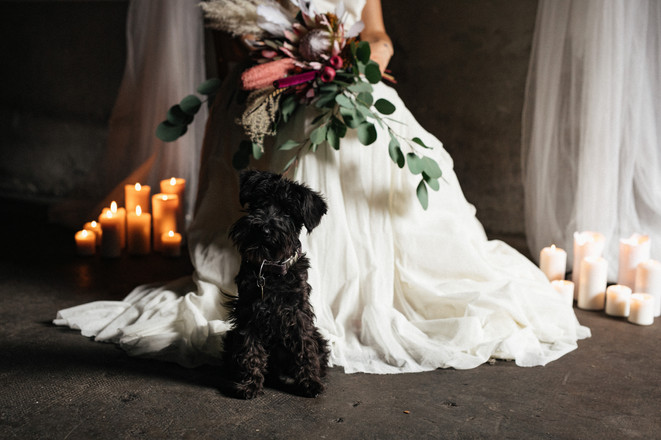 Brautstrauss mit Hund