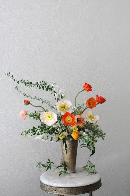Poppies - Die Mohnblume