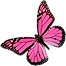 pngkey.com-real-butterfly-png-1143520.pn