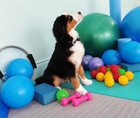 All those balls but he is still focused!