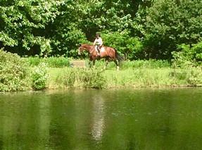 a leisurely hack around the pond