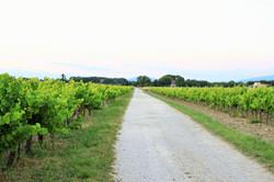 Chemin du Soustet