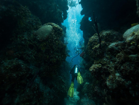 Why You Should Scuba Dive in Belize