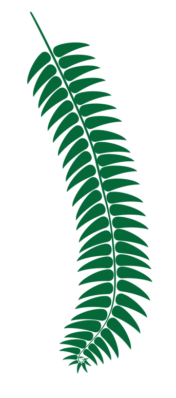 fern_dark_green.png