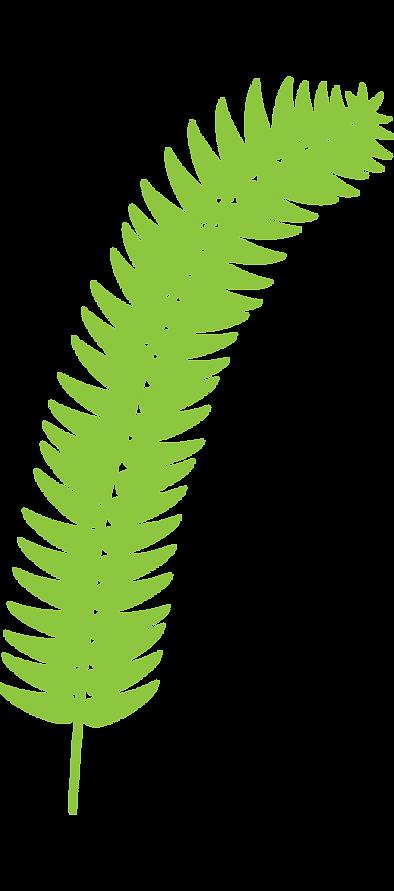 fern_light_green.png