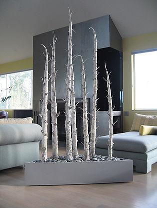 stand of birches in situ.jpg