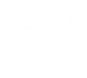 SH-dogonly-white.png