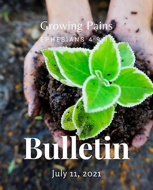 Bulletin 071121.jpg