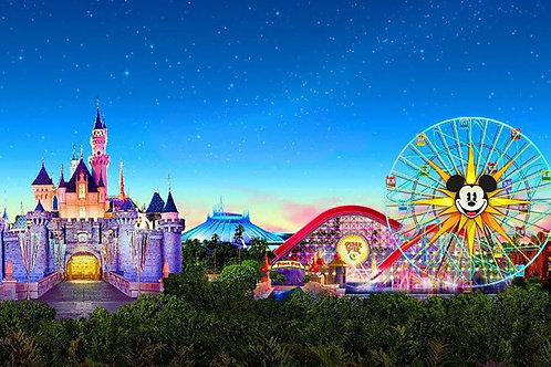 Disneyland Resort Family Get-away