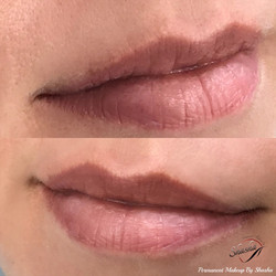 Healed Natural Ombre Lip Blush