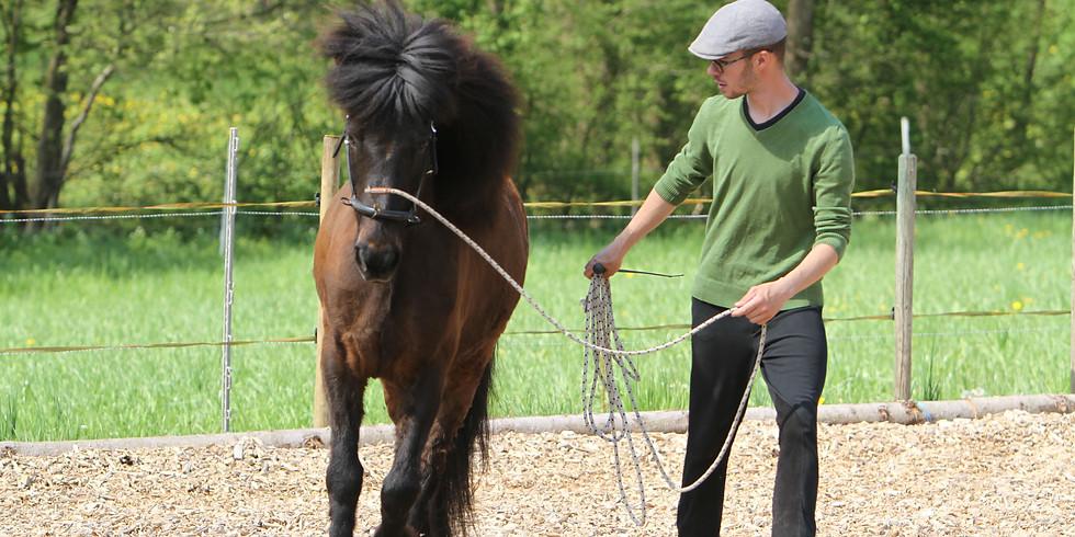 Die natürliche Schiefe des Pferdes