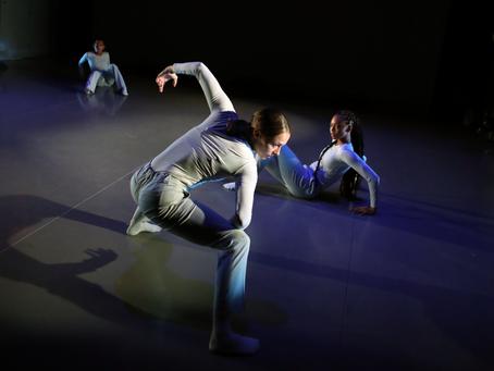 RDF Artist Spotlight: Company   E & Sri Sai Dance Academy