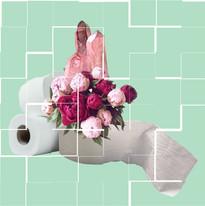 pink crystal toilet paper copy.jpg