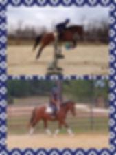 Kody collage.jpeg